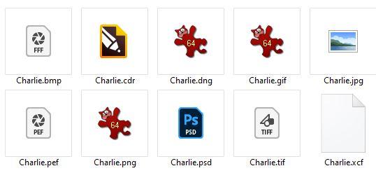 Un dossier d'images avec extensions visibles
